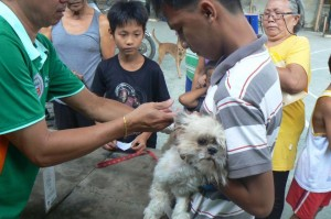 Anti Rabies Vaccination for Dogs and Cats with Municipal Agriculture and Provincial Veterinarians in Barangay Baraca Camachile Subic,Mayor Jay Khonghun (2)