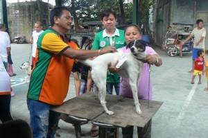 Anti Rabies Vaccination for Dogs and Cats with Municipal Agriculture and Provincial Veterinarians in Barangay Baraca Camachile Subic,Mayor Jay Khonghun (5)