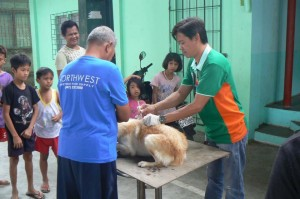 Anti Rabies Vaccination for Dogs and Cats with Municipal Agriculture and Provincial Veterinarians in Barangay Baraca Camachile Subic,Mayor Jay Khonghun (8)