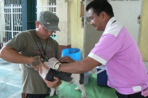 Anti Rabies Vaccination for Dogs and Cats with Municipal Agriculture and Provincial Veterinarians in Barangay Sto Thomas Subic,Mayor Jay Khonghun (4)