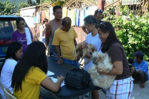 Anti Rabies Vaccination for Dogs and Cats - Subic Zambales (4)