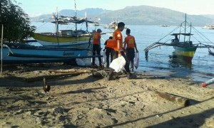 International Coastal Clean Up Drive - Subic Zambales (3)