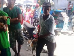 Massive Anti rabbies vacination barangay calapandayan Subic (2)