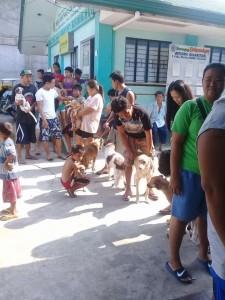 Massive Anti rabbies vacination barangay calapandayan Subic (5)