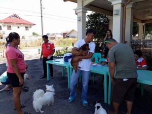 Massive anti Rabbies Vaccination for Dogs and Cats in Magdalena Homes Brgy Sto Thomas Subic (10)