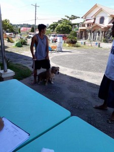 Massive anti Rabbies Vaccination for Dogs and Cats in Magdalena Homes Brgy Sto Thomas Subic (4)