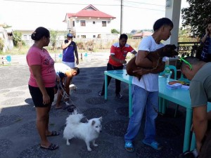 Massive anti Rabbies Vaccination for Dogs and Cats in Magdalena Homes Brgy Sto Thomas Subic (6)