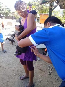 Massive anti Rabbies Vaccination for Dogs and Cats in Resettlement Brgy Manganvaca Subic (4)