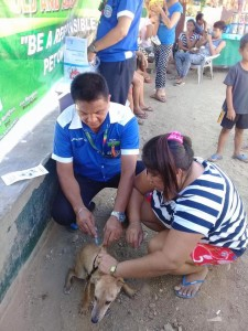 Massive anti Rabbies Vaccination for Dogs and Cats in Resettlement Brgy Manganvaca Subic (6)
