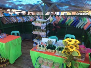 Subic Booth..Dinamulag Festival (3)